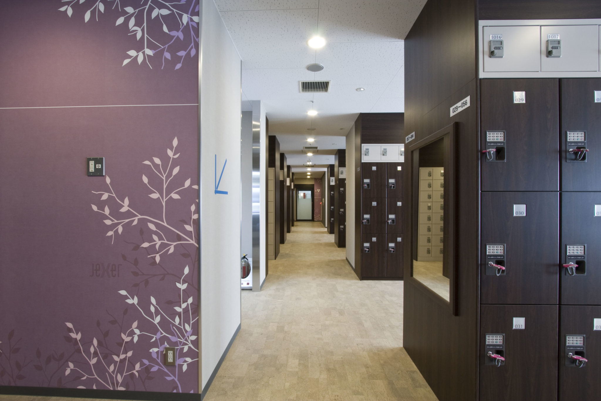 Locker room lockers