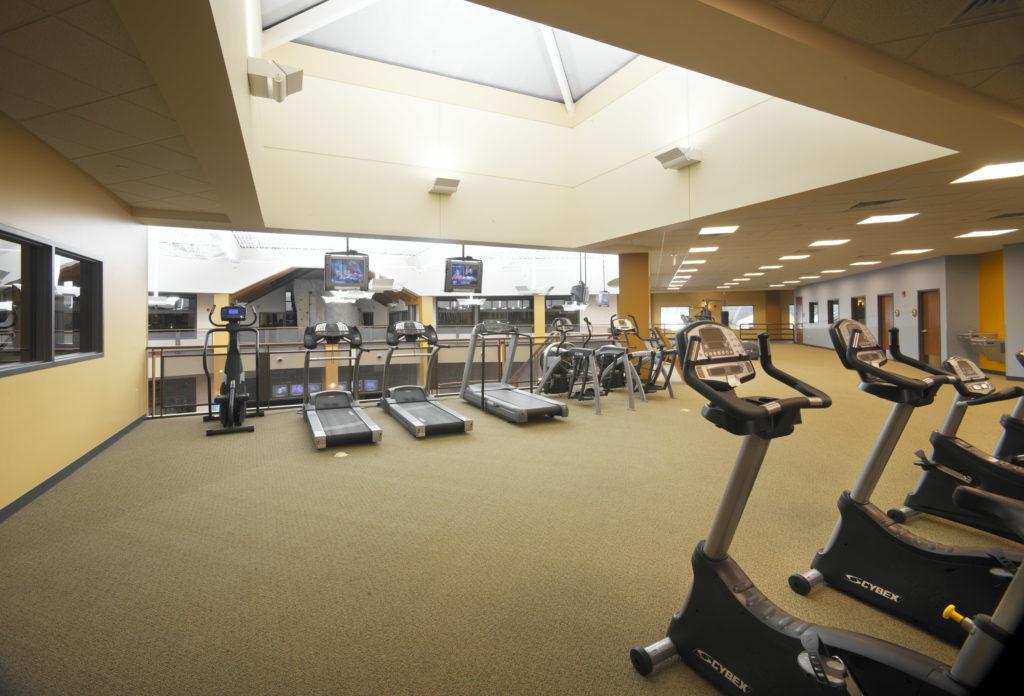 Skylight and treadmill